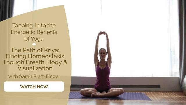 thumbnail image for Day 13 Flow: The Path of Kriya with Sarah Platt-Finger