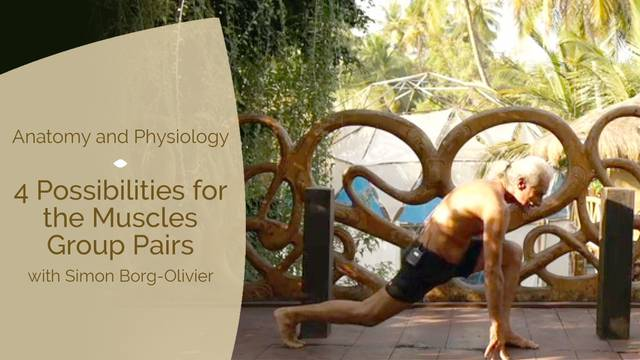 thumbnail image for 4 Possibilities for the Muscle Group Pairs