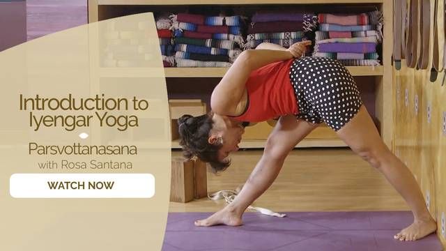 thumbnail image for Parsvottanasana