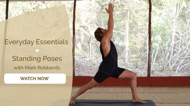 thumbnail image for Standing Poses
