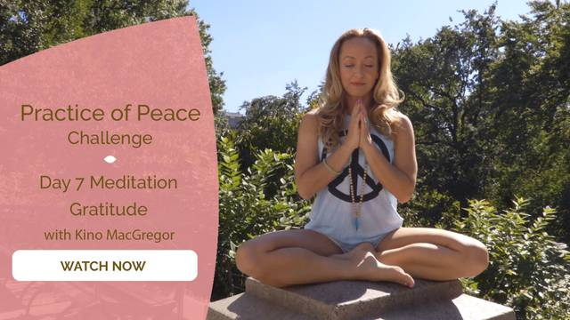 thumbnail image for Day 7 Meditation: Gratitude