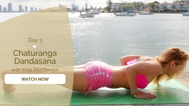 thumbnail image for Day 3: Chaturanga Dandasana