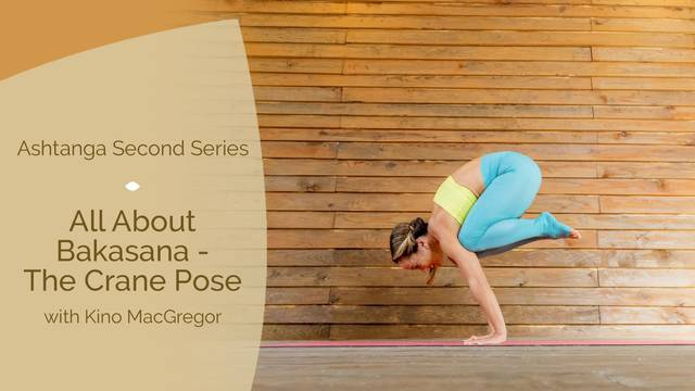 thumbnail image for All About Bakasana — The Crane Pose