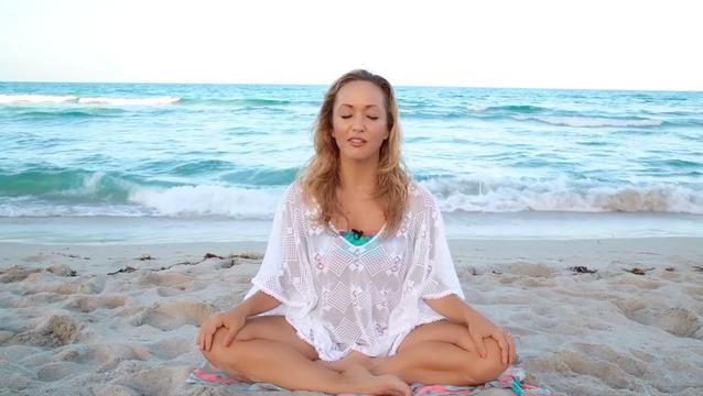 thumbnail image for The Meditators Mind Meditation
