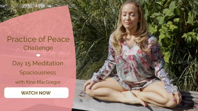 thumbnail image for Day 15 Meditation: Spaciousness