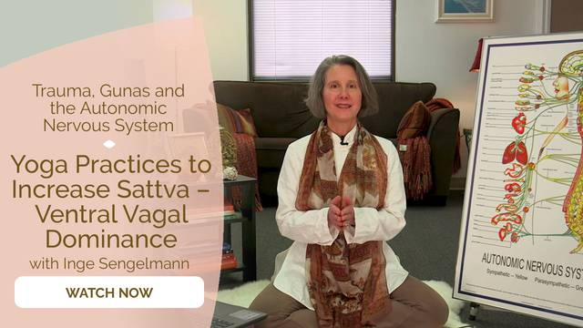 thumbnail image for Yoga Practices to Increase Sattva – Ventral Vagal Dominance