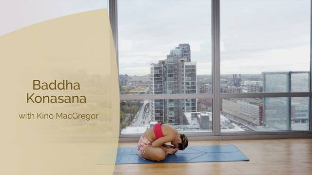 thumbnail image for Baddha Konasana - Bound Angle Pose with Kino