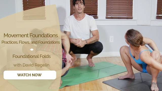 thumbnail image for Foundational Folds