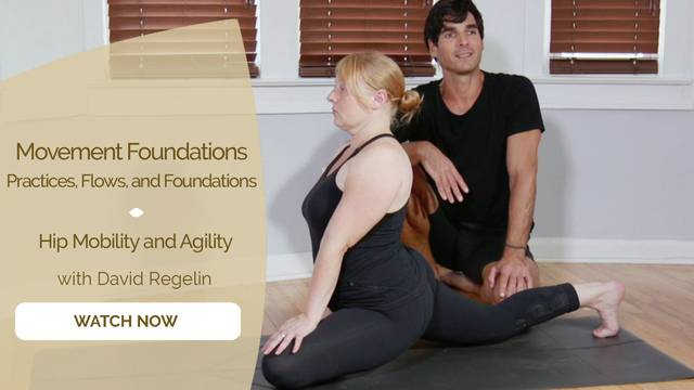 thumbnail image for Hip Mobility and Agility