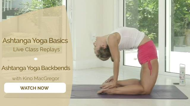 thumbnail image for Ashtanga Yoga Backbends with Kino MacGregor