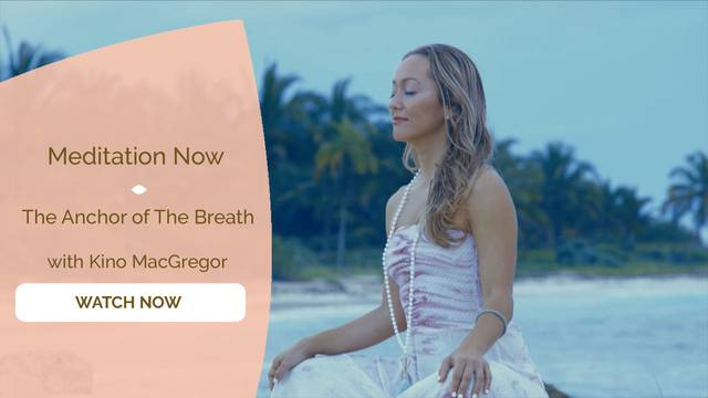 thumbnail image for The Anchor of The Breath