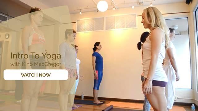 thumbnail image for Intro To Yoga With Kino