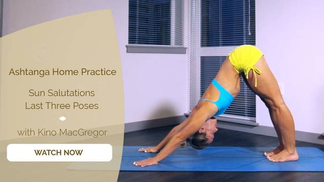 thumbnail image for 1. Sun Salutations + Last Three Poses