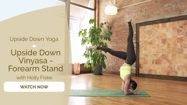 thumbnail image for Forearm Stand