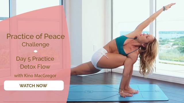 thumbnail image for Day 5 Practice: Detox Flow