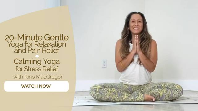thumbnail image for Calming Yoga for Stress Relief