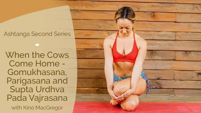thumbnail image for When the Cows Come Home — Gomukhasana, Parigasana and Supta Urdhva Pada Vajrasana