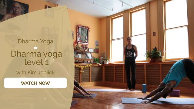 thumbnail image for Dharma Yoga Level 1