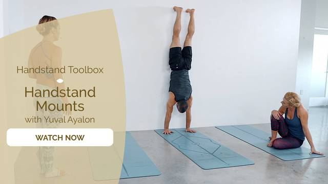thumbnail image for Handstand Mounts